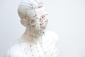acupuncture mannequin