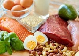 protein for muscles